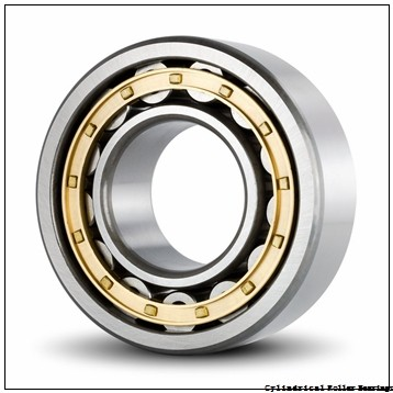 11.811 Inch | 300 Millimeter x 16.535 Inch | 420 Millimeter x 2.835 Inch | 72 Millimeter  INA SL182960-TB  Cylindrical Roller Bearings