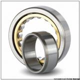 3.15 Inch | 80 Millimeter x 4.331 Inch | 110 Millimeter x 0.748 Inch | 19 Millimeter  INA SL182916-BR  Cylindrical Roller Bearings